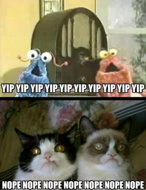 Grumpy Cat Funny and Cartoon