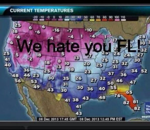 Funny Quotes About Florida