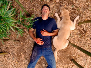 125 Favorite Lost Quotes From Lost TV Series