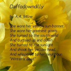 daffodil spring poem daffodowndilly by a a milne more golden daffodils ...