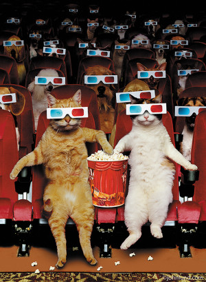 cats in movie theater wearing 3D glasses and eating popcorn in a funny ...