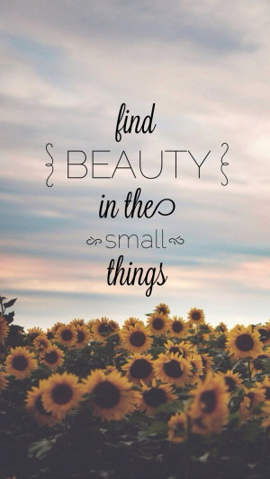 Find Beauty In The Small Things Wallpaper