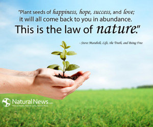 Plant seeds of happiness, hope, success, and love; it will all come ...