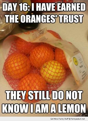 undercover fruit gained oranges trust lemon in bag food funny pics ...