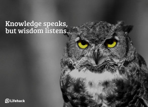 What Are the Differences Between Knowledge, Wisdom, and Insight?