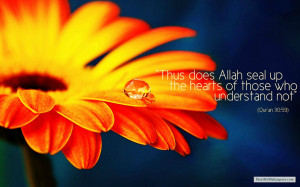 Free Download Beautiful Islamic Quotes