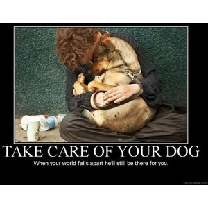 Words to live by / A homeless man and his dog