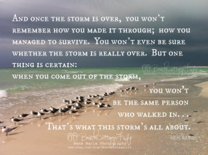 Seagulls Seaside Inspirational Coastal Quote Once Storm is Over Beach ...