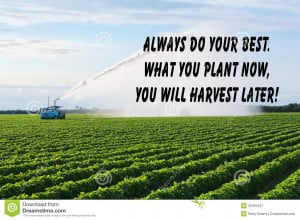 Inspirational quote about success and life with farmland in the ...