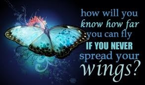 spread your wings and fly!