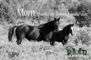 MOTHERS DAY!!! #happymothersday from Black Mountain Ranch Wild Horse ...