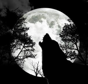 january full moon full wolf moon full old moon full cold moon