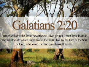 Bible Verses On Love Galatians 2:20-21 Trees HD Wallpaper