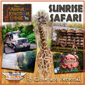 Disney Animal Kingdom Lodge Safari Tour
