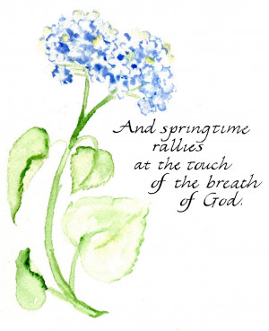 ... springtime quotes the image of god breathing warmth flowers and spring