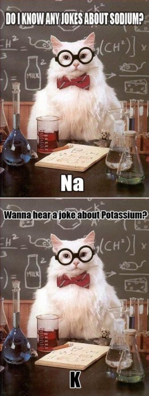 cat chemistry jokes :)