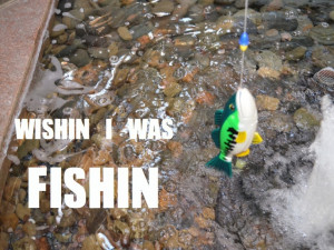 ... Fishing quotes with images. Fishing memes. Wishin I was fishin quote