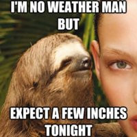 weather-man-inches-dirty-sloth-pic.jpg