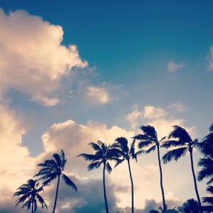 Aloha #Friday ️