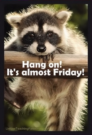hang on its almost Friday