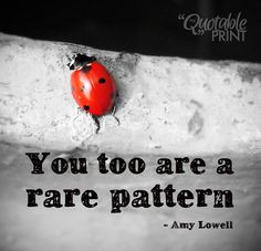 Daily Quote - You too are a rare pattern. - Amy Lowell #quote #ladybug ...
