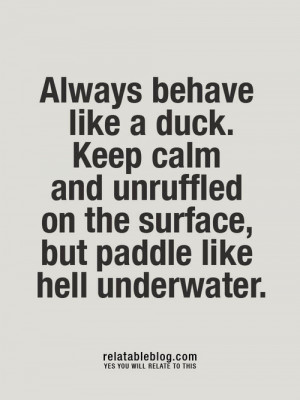 ... calm and unruffled on the surface but paddle like hell underwater