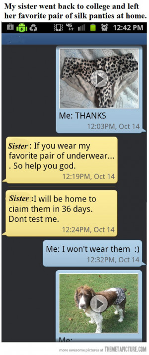 Funny photos funny text message dog wearing clothes