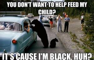 LOL-MEME-HAHA-2014-Black-Bear.jpg