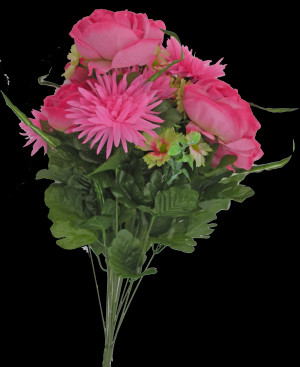 22 quot Cabbage Rose Mum Cosmos Bush Pink