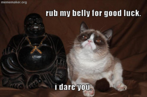 Dump Day Grumpy Cat Quotes Funny Notes