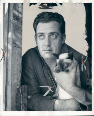 Raymond Burr with his Siamese cat circa 1960s It's interesting to see ...
