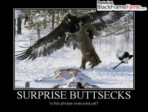 Related Pictures suprise buttsecks funny pictures
