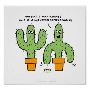 mexican cactus these funny looking cactus photos in sayings and