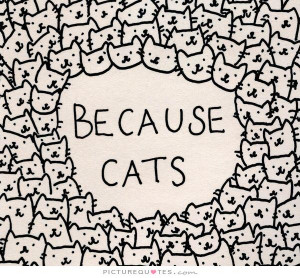Cat Quotes Animal Quotes