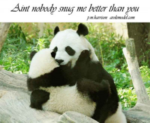 love animal quotes free animal quotes funny quotes cute animals quote ...