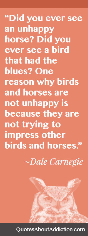 Have You Ever Seen an Unhappy Horse or Bird?