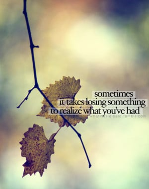 "... It Takes Losing Something To Realize What You've Had "" ~ Sad Quote"