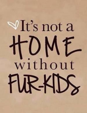 Fur babies! Pets Dogs