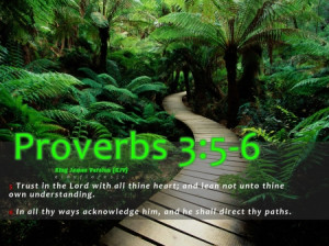 Proverbs 3:5-6 Bible verse - bible verse wallpaper, bible verse ...