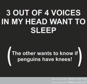 Tags: funny pictures , funny quotes , penguins , voices in my head |