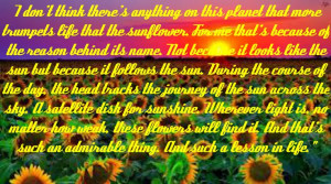 Helen Mirren's quote about sunflowers from