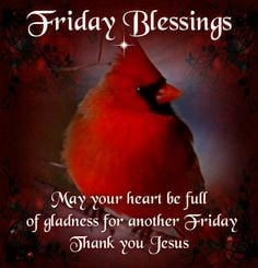 FRIDAYS BLESSING More