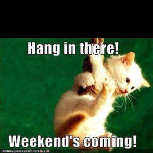 Hang on...