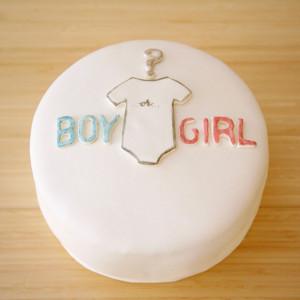 Gender Reveal Cake - The Newlywed Pilgrimage