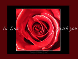 LOVE-analove-romantic-quotes-Roses-Flowers-MY-FLOWER-BOX-Love_large ...
