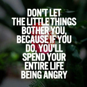 don t let little things bother you