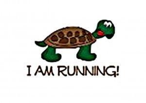 Marathon training and the long run