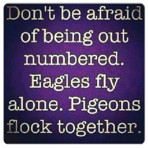 Fly like an eagle #quote