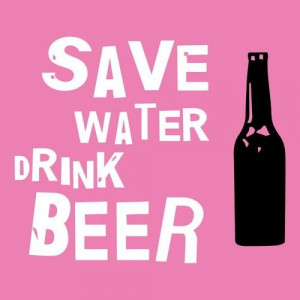funny beer quotes (1)