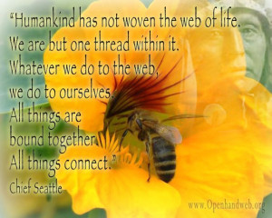 Chief Seattle quote - web of life